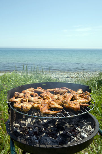 beach barbecue grill